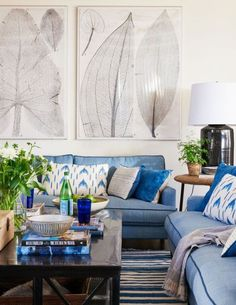 Beautiful decorated coastal living with welcoming blue hues