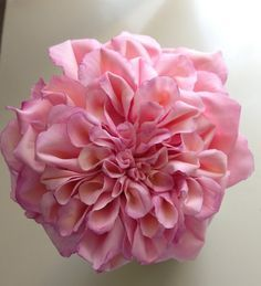 230 best wafer paper flowers images on pinterest paper flowers templates wafer paper flowers google zoeken mightylinksfo