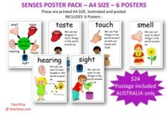 SENSES POSTER PACK  A4 SIZE  6 POSTERSThese are printed A4 SIZE, laminated and posted Australia onlyINCLUDES: 6 PostersOur five sensesTasteTouchHearingSightSmellPostage is included in this price AUSTRALIA ONLYPlease email for cost other countries teachezy@bigpond.com