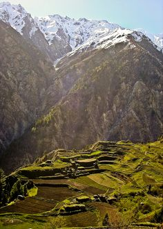 Fairy meadows, near Gilgit, Pakistan... Imagine living there? Breathtaking View.  LD