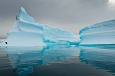 Antarctica. Posted by Gary Hodne on Apr 9th, 2011 in Antarctica.