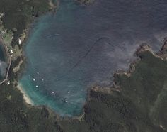 5 Mysterious Creatures Caught On Google Maps | The Fortean Slip