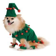 Grinch Dog Costume http://cooldogcostumes.com/product/grinch-dog-costume/