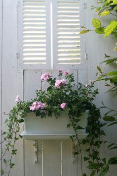 pretty little window box and shutters Beautiful Flower Arrangements, Beautiful Flowers, Pink Geranium, Flower Window, Rose Cottage, White Cottage, Garden Windows, Shabby, Garden Inspiration