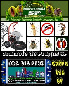 Dedetização em São Paulo 3427 2276 Orçamentos Via Fone