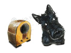 Scottish Terrier Dog , printed on Fine quality paper, 300gsm. Vintage Radio Printed with UltraChrome K3 pigment ink. 8 X 6 Inches Initialed on