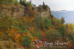 Webster's Falls, Tew Falls, Dundus Peak Trail Hamilton ON (Guelph Nature Photographer) Hamilton Ontario, Hiking Trails, Nature, Nature Illustration, Off Grid, Mother Nature