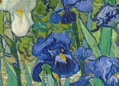 Vincent van Gogh 'Irises' (detail) 1889 | Flickr - Photo Sharing!