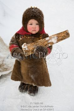 Image of yana nogo, a 2 year old komi girl helps to carry firewood at her family's winter camp. yamal, northwest siberia, russia by ArcticPhoto