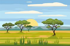 Find African Landscape Savannah Sunset Vector Illustration stock images in HD and millions of other royalty-free stock photos, illustrations and vectors in the Shutterstock collection. Thousands of new, high-quality pictures added every day. Scenery Drawing For Kids, Lion King Pictures, African Tree, Cartoon Trees, Diorama, Landscape Drawings, Nature Tree, Flower Images, Free Vector Art