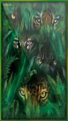 ojos felinos hc
