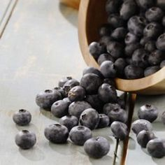 Whole-Wheat Blueberry Bars