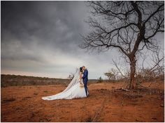 Ulusaba Private Game Reserve - Safari Elopement - Shane & Maria