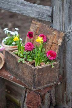 Flower pots grouped together in old wooden boxes Unique Garden, Garden Art, Garden Design, Box Garden, Landscape Design, Outdoor Rooms, Outdoor Gardens, Beautiful Gardens, Beautiful Flowers