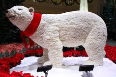 Bellagio Conservatory polar bear made of white carnations.