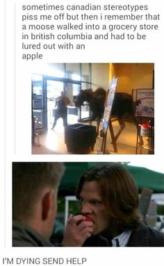 I don't know what's better, the Canadian stereotype or the fact that supernatural has a related gifxD