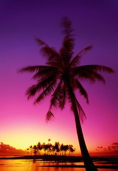 Tropical island beach sunset