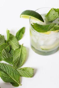 The Best Gin Mint Julep Recipe