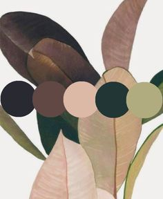 Concept Board, Home Remodeling, Mid-century Modern, Color Schemes, Plant Leaves, Mid Century, Interior Design, Nature, Plants