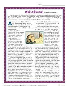 Rikki-Tikki-Tavi Reading Comprehension Set