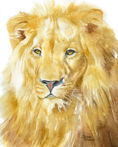 Lion Watercolor Painting - 5 x 7 - Giclee Print - Fine Art Print - African Animal - Nursery Art from Susan Windsor. Saved to Watercolors. Watercolor Lion, Watercolor Animals, Watercolor Paintings, Original Paintings, Watercolors, Watercolour Drawings, Original Artwork, Lion Painting, Painting Prints