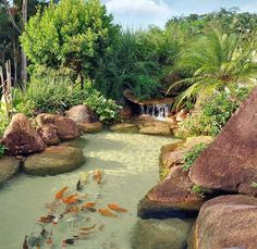 Gorgeous Backyard Fish Pond Design Ideas - A backyard pond can add a great deal of charm and appeal to your garden, but good planning is essential. So if you want a pond, here's some advice tha. Pond Design, Landscape Design, Garden Design, Landscape Plans, Ponds Backyard, Backyard Landscaping, Landscaping Ideas, Garden Ponds, Tropical Landscaping