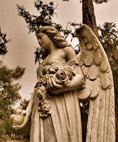 Bonaventure Cemetery, Savannah, GA. photo by Dick Bjornseth