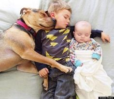 Sweetest babes pictures with doggy - Baby Animals Adorable Best of 2019 Dogs And Kids, Animals For Kids, Cute Baby Animals, So Cute Baby, Share Pictures, Baby Pictures, Baby Dogs, Dogs And Puppies, Funny Babies