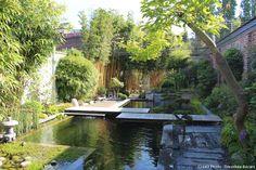 Jardin japonais, France 59, Un grand bassin peuplé de carpes Koi occupe la première moitié du jardin