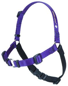 SENSE-ation No-Pull Dog Harness -- Quickly view this special dog product, click the image : Harnesses for dogs