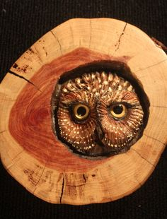 Owl Wood Carving in Red Cedar