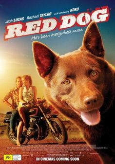 An Australian Movie - Based on the legendary true story of the Red Dog who united a disparate local community while roaming the Australian outback in search of his long lost master.