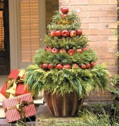 Good Looking Natural Outdoor Christmas Tree Using Real Tree With Red Apples Decor : Creating Beautiful Nuance in Christmas Eve with Natural Christmas Tree Decorations for Outdoor Christmas Topiary, Noel Christmas, Outdoor Christmas Decorations, Country Christmas, All Things Christmas, Winter Christmas, Christmas Wreaths, Christmas Crafts, Tree Decorations