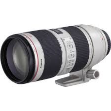 This 70mm - 200mm is one of four essential #Canon #lenses all #photographers using Canon #cameras should own. Take a look at this article to check out the other three.