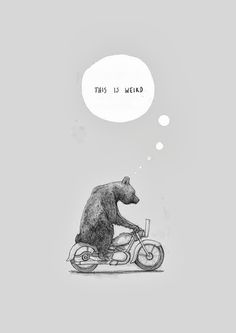 This isn't happiness. #art #design #bear                                                                                                                                                                                 More