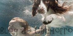 Fotos de cachorros e crianças fofas - Exite alguma coisa mais linda que crianças com cachorros? Separamos para você 12 lindas fotos de cachorros e crianças.