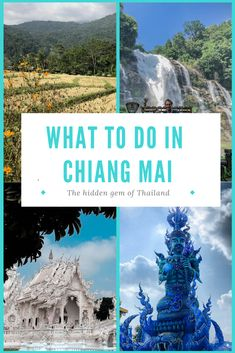 Chiang Mai - The hidden gem of Thailand offers a lot to see and do. Besides Loy Krathong the city is a wonderful place to relax and take a breather from the overcrowded beaches and cities. Chiang Mai, Wonderful Places, How To Introduce Yourself, Travel Guide, Beaches, Cities, Thailand, Relax, Gems