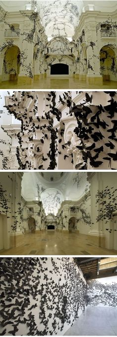 Carlos Amorales   Black birds - reminds me of my friend Clare Twomey's installation in the V&A of blue birds - gorgeous