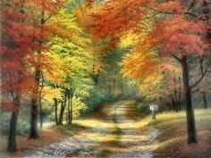 charles white artist paintings   , art, autumn, Charles White, colors, forest, landscape, painting ...