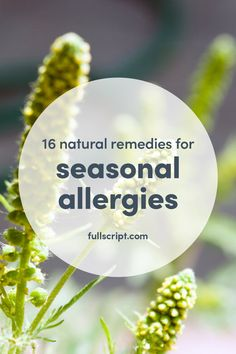 Natural remedies for seasonal allergies Natural Remedies For Allergies, Allergy Remedies, Natural Headache Remedies, Eczema Remedies, Seasonal Allergy Symptoms, Seasonal Allergies, Diabetes, Essential Oils For Headaches, Allergies