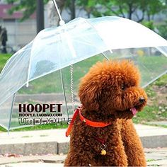 Cheap dog rain, Buy Quality gear gear directly from China gears gears gears Suppliers: Original Top Transparent PE Pet Umbrella Small Dog Umbrella Rain Gear with Dog Leads Keeps Pet Dry Comfortable in Rain Snowing Cat Umbrella, Transparent Umbrella, Cat Dog, Pet Puppy, Dog Coats, Dog Supplies, Dog Leash, Dog Accessories, Small Dogs