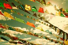 Buddhist prayer flags. You string them outside and the wind carriers your prayers to heaven. You see these all over the himalayas. I loved seeing them.