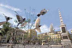 Peaceful La Merced square in Malaga