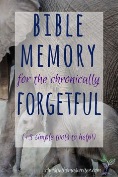 Bible memory can be so hard, especially for the chronically forgetful. Here are 3 reasons why it's important, even when it's hard, and 3 simple resources to help even the most forgetful get the Word inside! via @cthomaswriter
