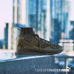 f65f8647a3fe Puma Ignite Evoknit Fold CF Men s Shoes