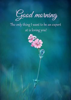 """Good Morning Messages Loving You""""The only thing I want to be an expert at is loving you. Good Morning Friday Images, Funny Good Morning Messages, Morning Quotes Images, Good Morning Funny, Good Morning Greetings, Good Morning Good Night, Good Morning Wishes, Messages Matinaux, Good Morning Flowers Gif"""