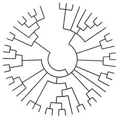 evolutionary phylogenetic tree for a tattoo …