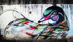 graffiti birds street art / Luis Seven Martins (L7m)