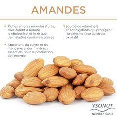 Les fruits secs sont indispensables dans votre #alimentation. #Amandes