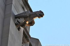 Grotesque | New York Life Insurance Company at 51 Madison Avenue, New York